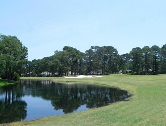 oyster reef golf club reviews