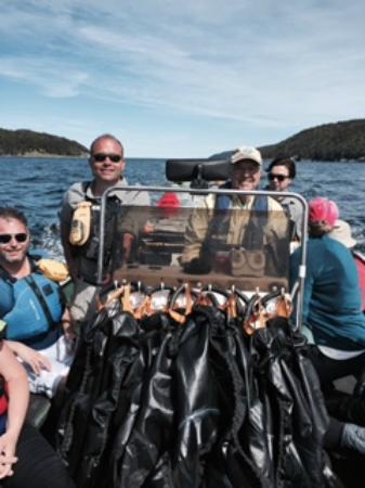stan cook sea kayaking reviews