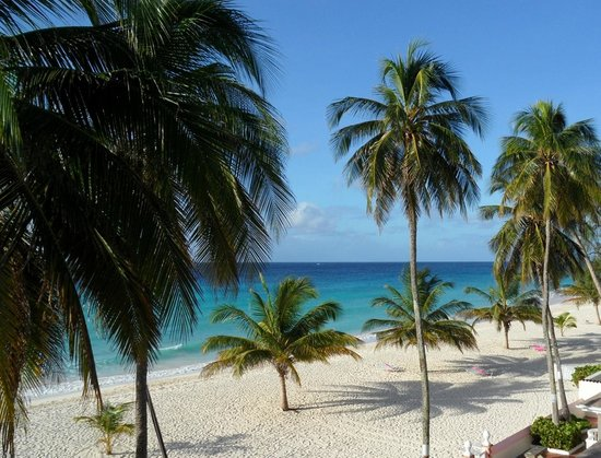 southern palms beach club reviews