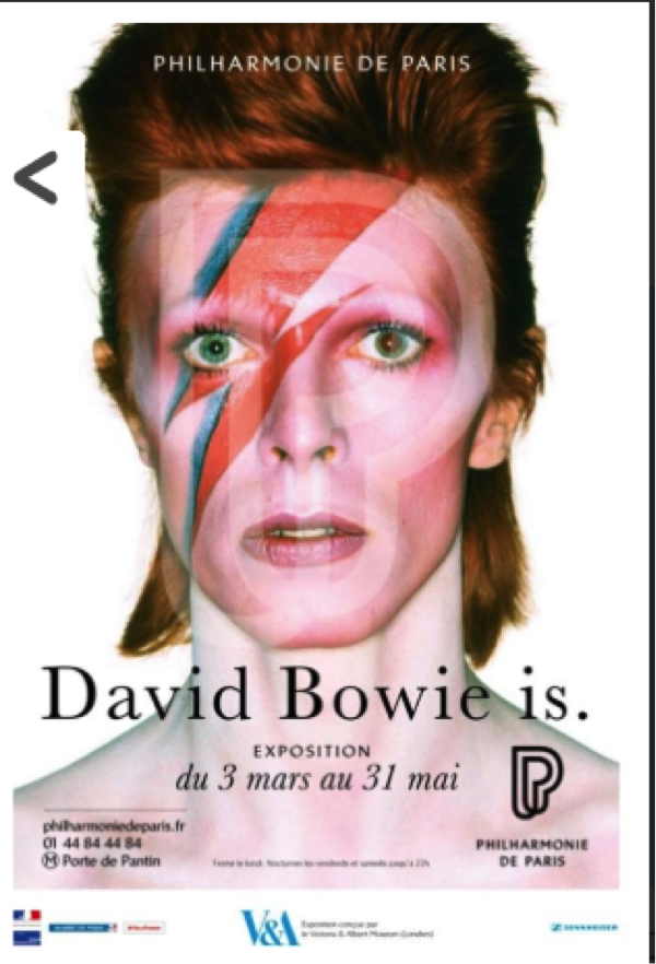 the age of bowie book review