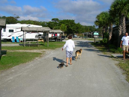 myrtle beach state park campground reviews