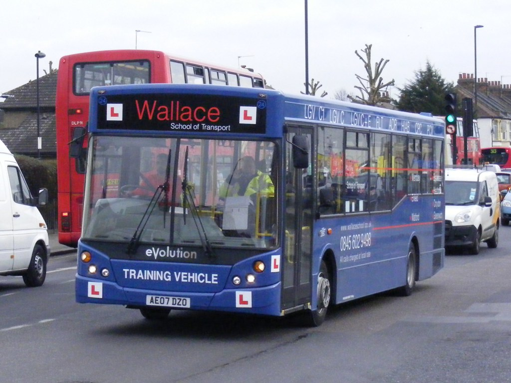 wallace school of transport reviews