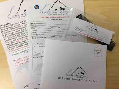glacier peak allergy test reviews