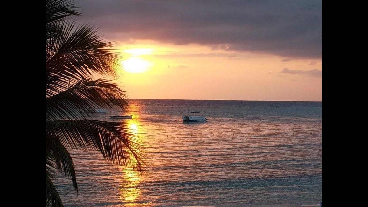 ocho rios riu jamaica reviews